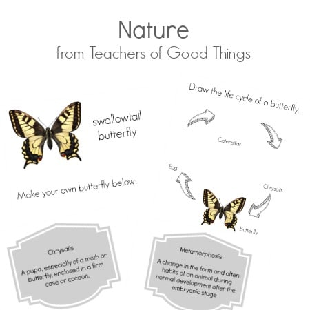 Nature from Teachers of Good Things