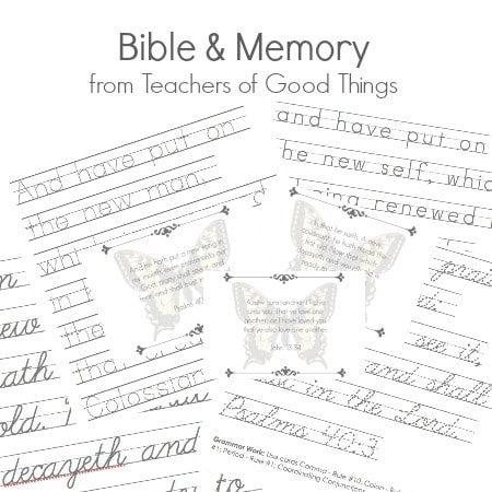 Bible & Memory from Teachers of Good Things
