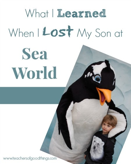 What I Learned When I Lost My Son at Sea World www.joyinthehome.com
