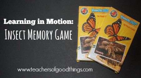 Learning in Motion: Insect Memory Game