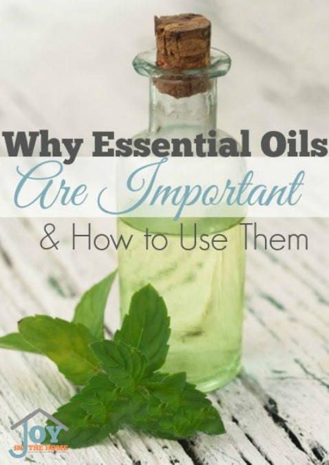 Why Essential Oils Are Important & How to Use Them | www.joyinthehome.com