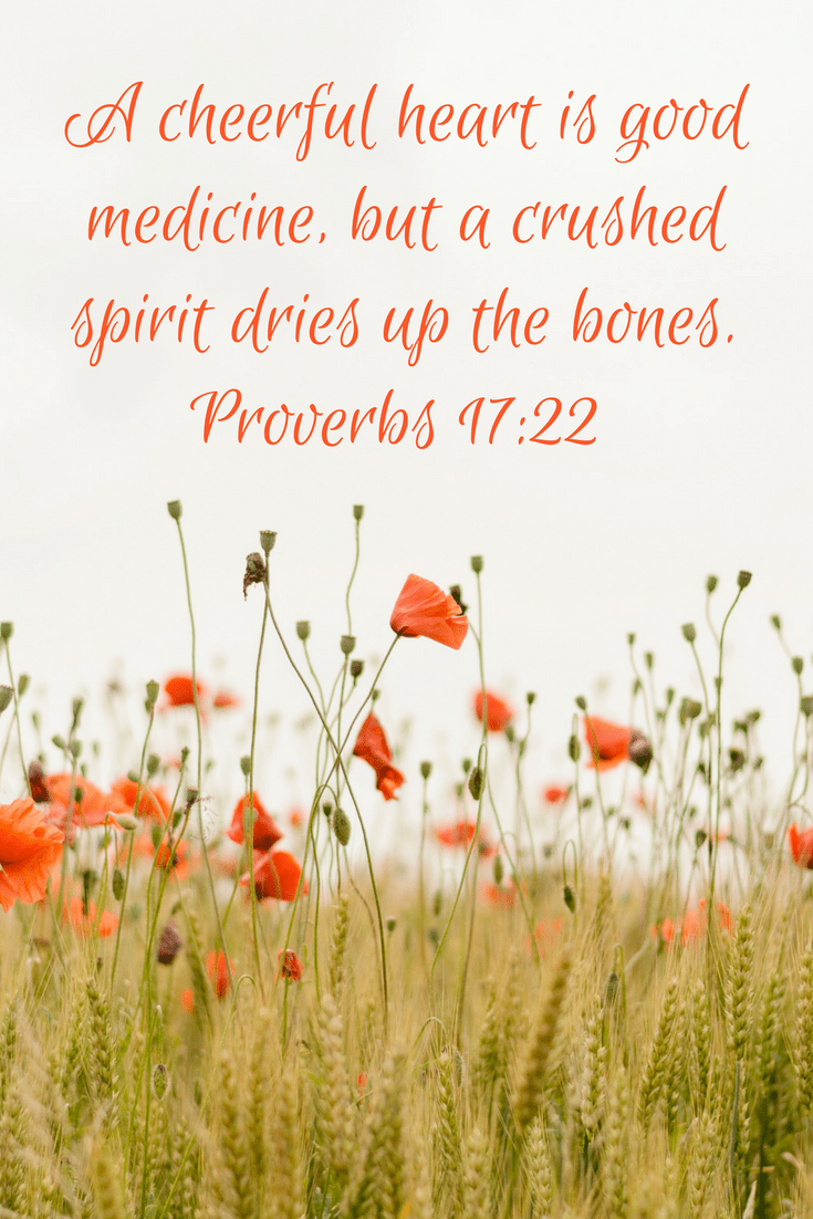 A cheerful heart is good medicine, but a crushed spirit dries up the bones. | www.joyinthehome.com