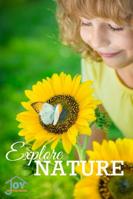 Explore Nature - Part of the 31 Days of Exploring Free Afternoon Activities | www.joyinthehome.com