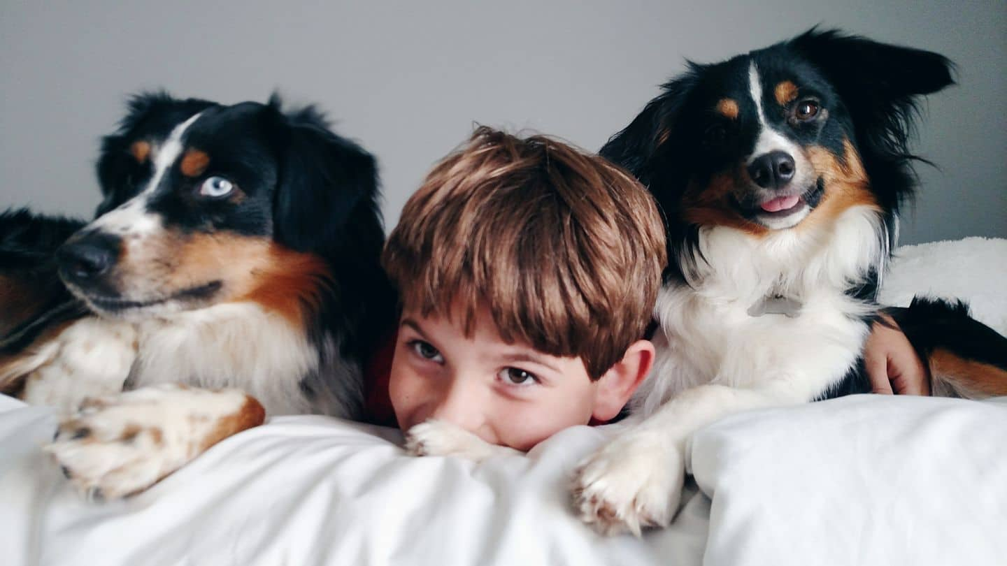 A boy and his two best friends.