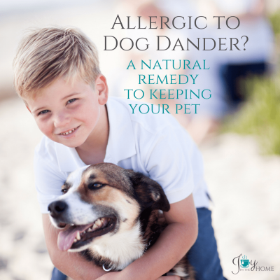 Allergic to dog dander? A Natural Remedy to Keeping Your Pet | www.joyinthehome.com