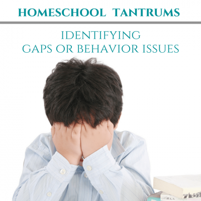 Homeschool Tantrums Identifying Gaps or Behavior issues