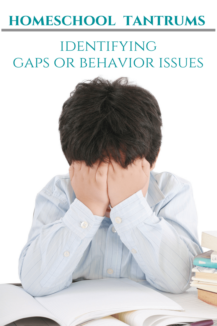 Identify learning gaps or behavior issues. Learn how to identify what is causing your child's tantrums during homeschool.
